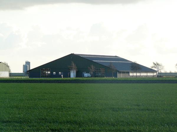 mts-de-jong-2011